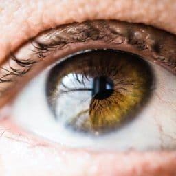 Close up of a human eye.
